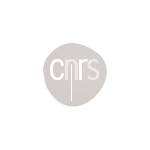 CNRS-logo-gris