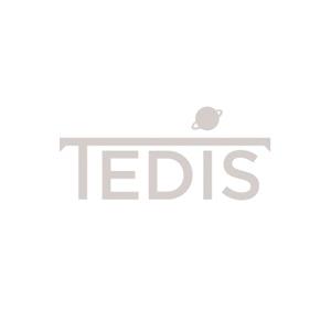 Logo-tedis-gris